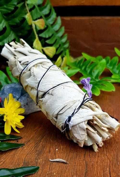 White Sage Smudge Stick 5inch-Gypsy Divine-Gypsy Divine